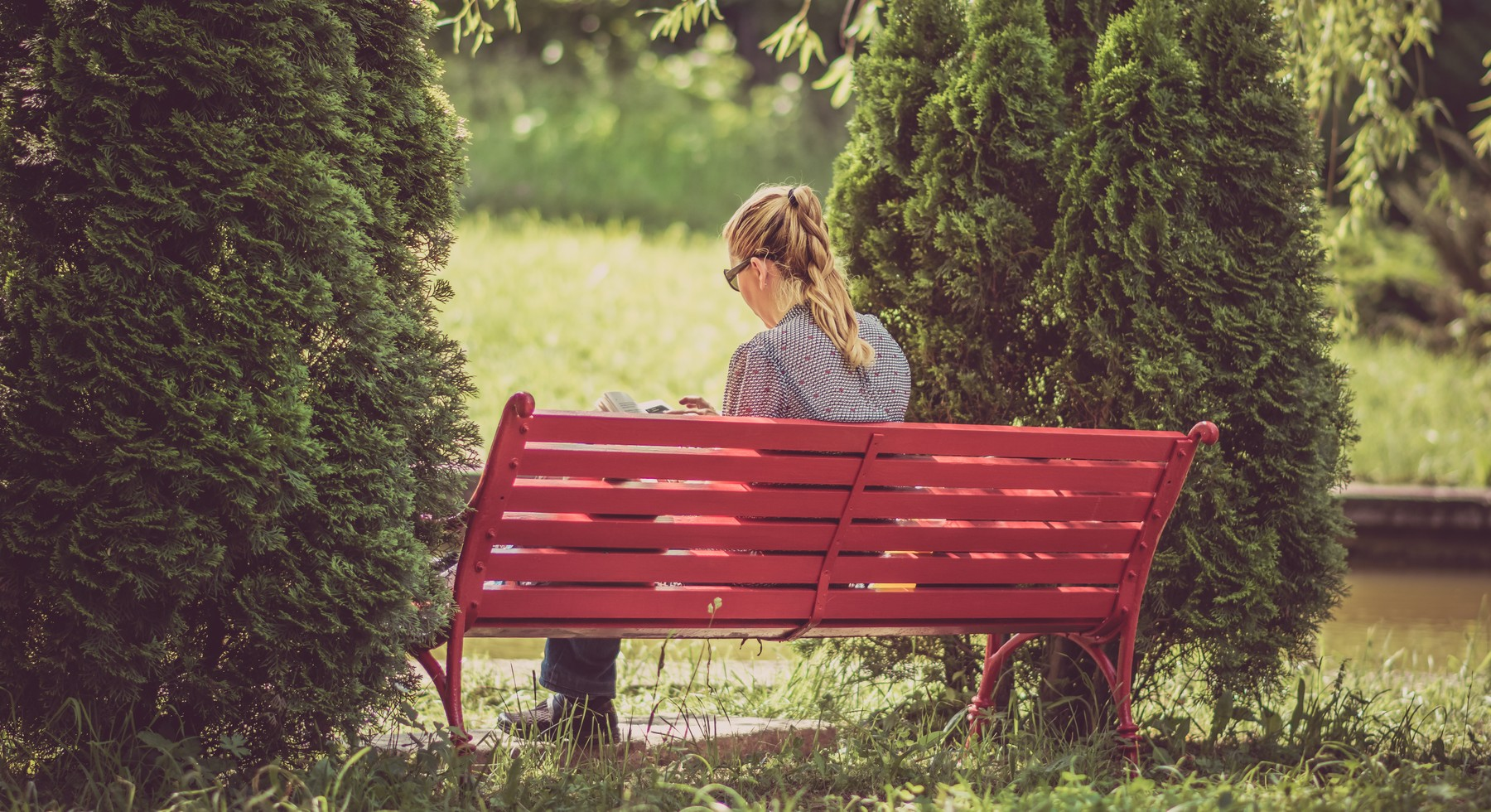 Lady sitting on a bench, reading a book
